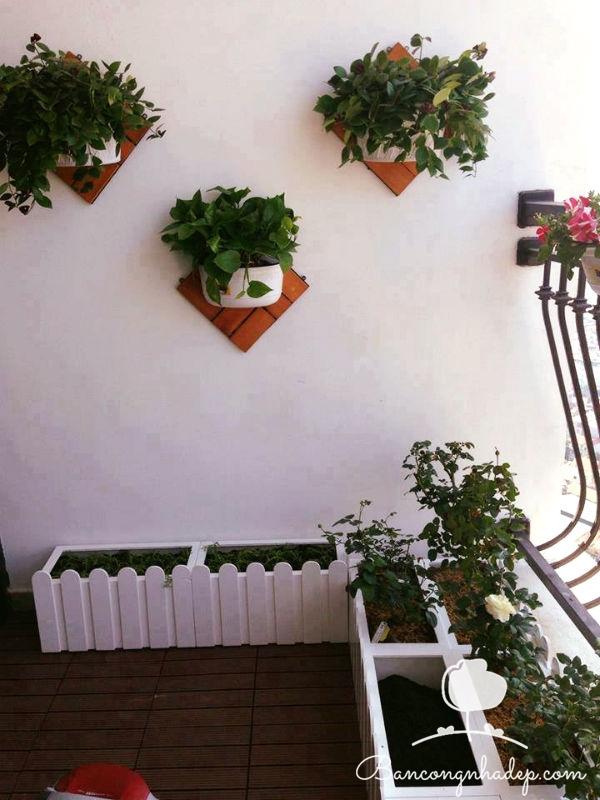 treo hoa trang trí trên tường