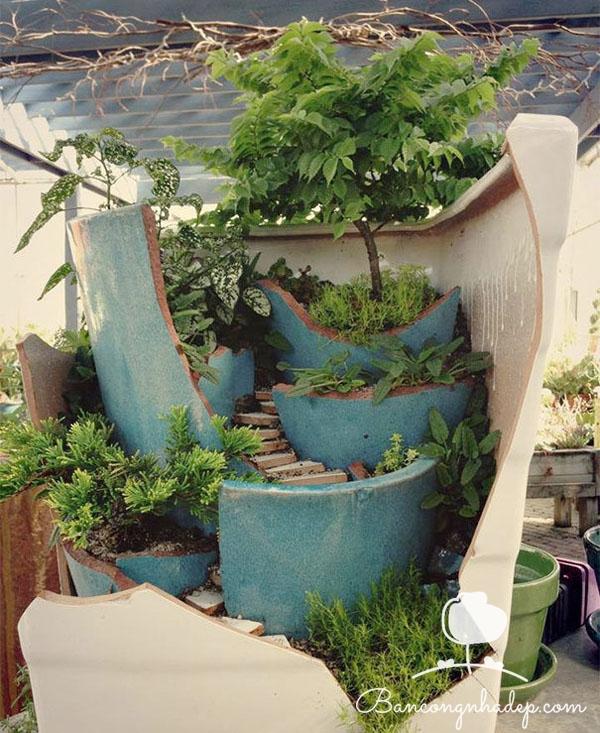 vườn từ chậu vỡ
