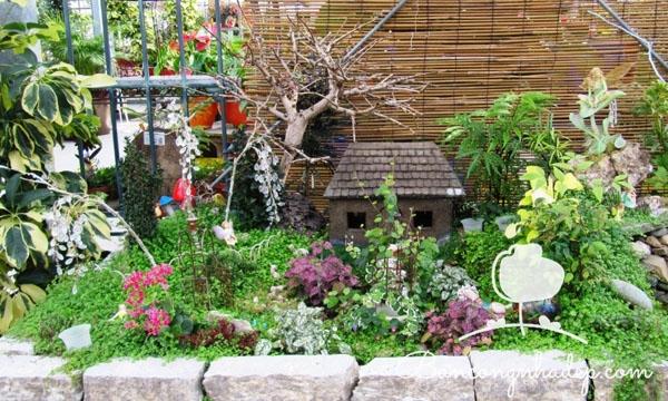 khu vườn mini dễ thương