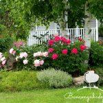 Làm sao để sở hữu khu vườn nhỏ trên ban công