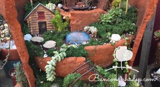 khu vườn trong chậu