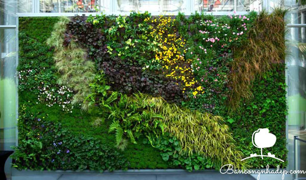 tường cỏ giả trang trí ban công chung cư