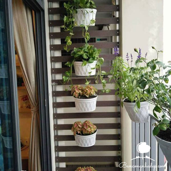giàn treo hoa ban công chung cư