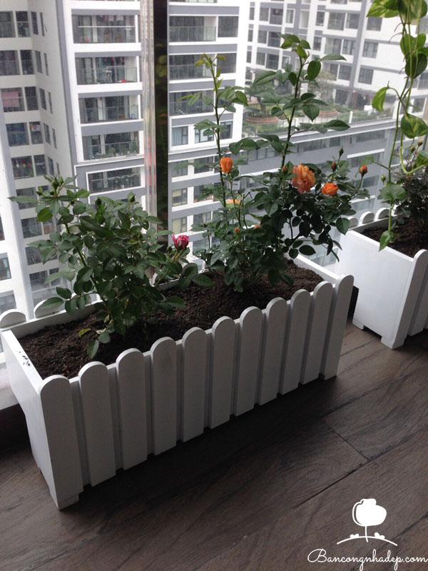 thiết kế ban công chung cư đẹp