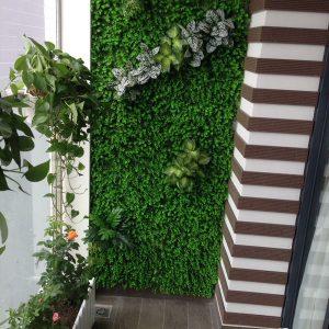 Trang trí tường cỏ ban công chung cư
